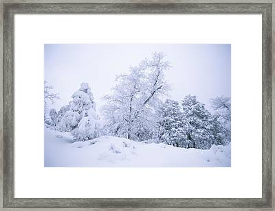 A Winter Landscape Of Snow-covered Framed Print by Rich Reid