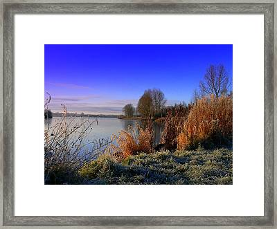 A Winter Scene Framed Print by Cat Shatwell