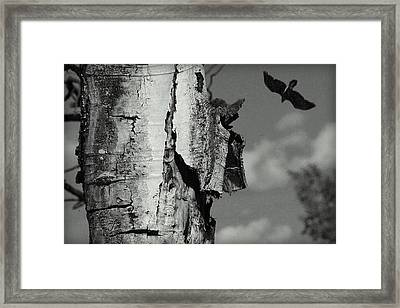 A Winters Day.. Framed Print by Al  Swasey