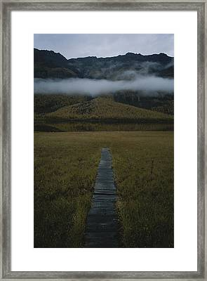 A Wooden Pathway Leads To An Framed Print by Randy Olson