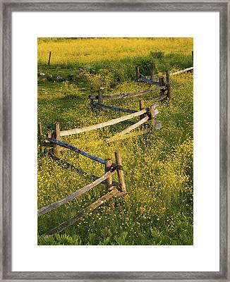A Wooden Rail Fence Surrounded By Framed Print by David Chapman
