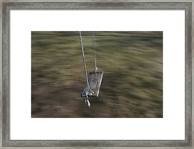 A Wooden Swing Waits For A Rider Framed Print