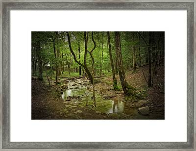 A Woodland Stream In Cades Cove No.472 Framed Print by Randall Nyhof