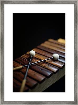 A Xylophone Framed Print