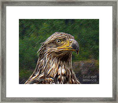 A Young Brave   Framed Print
