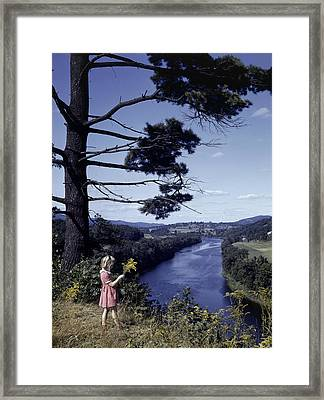 A Young Girl Picks Goldenrod Growing Framed Print