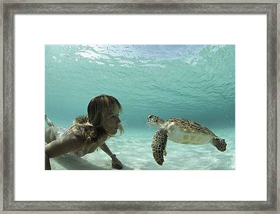 A Young Woman Swimming Face-to-face Framed Print by Bill Curtsinger