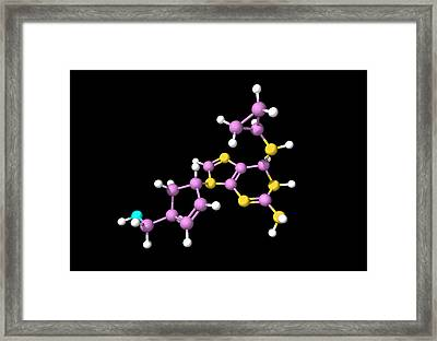 Abacavir Aids Drug Molecule Framed Print by Dr Tim Evans
