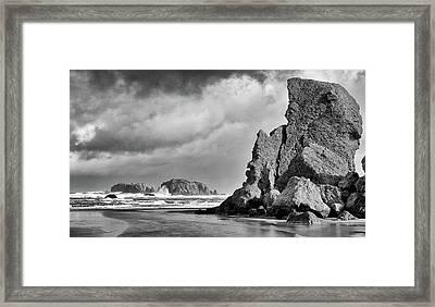 Framed Print featuring the photograph Abandon At Bandon by Kevin Munro