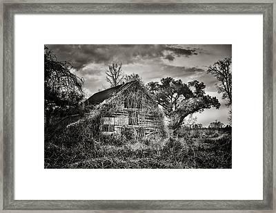 Abandoned Barn 2 Framed Print by Brenda Bryant