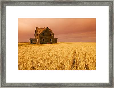 Abandoned Farm House, Wind-blown Durum Framed Print by Dave Reede