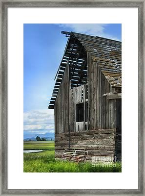 Abandoned Montana Barn Framed Print by Sandra Bronstein