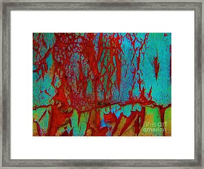 Abby Crack Framed Print