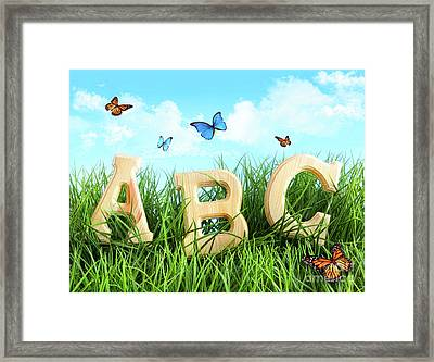 Abc Letters In The Grass Framed Print by Sandra Cunningham