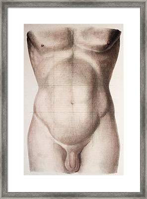 Abdominal Regions Framed Print by Mehau Kulyk