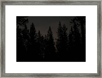 Above The Pines Framed Print by Arlyn Petrie