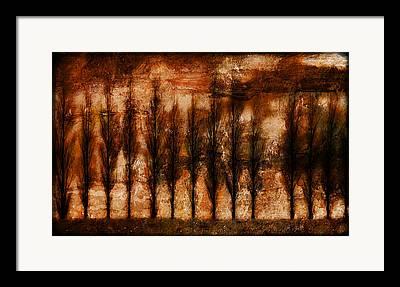 Epic Amazing Colors Landscape Digital Modern Still Life Trees Warm Natural Photographs Framed Prints