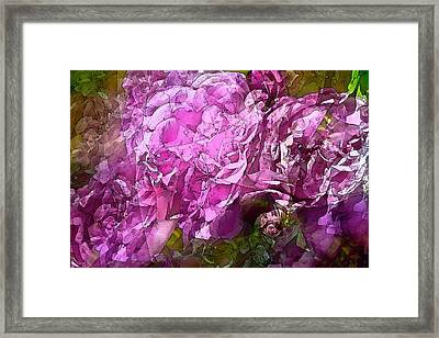 Abstract 274 Framed Print by Pamela Cooper