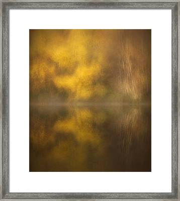 Abstract Birch Reflections Framed Print by Andy Astbury