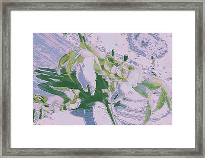 Abstract Crab1 Framed Print