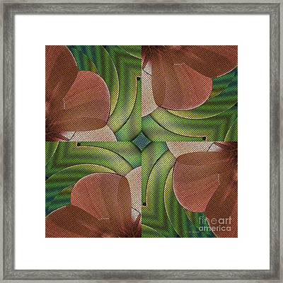Abstract Curves Framed Print by Deborah Benoit