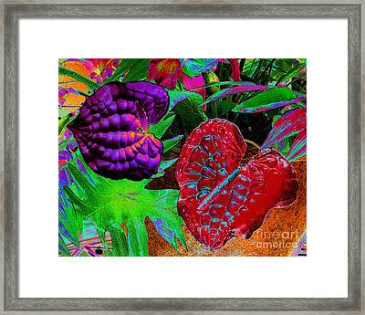 Abstract Digital Painting Of Spath Flowers Framed Print by Merton Allen