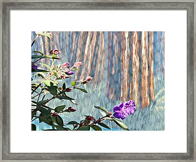 Framed Print featuring the photograph Abstract Floral by Jo Sheehan