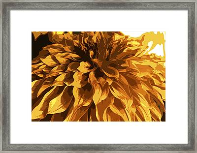 Abstract Flowers 14 Framed Print by Sumit Mehndiratta