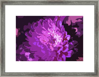 Abstract Flowers 3 Framed Print by Sumit Mehndiratta