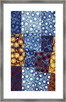 Abstract Fusion 10 Framed Print