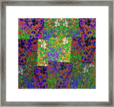 Abstract Fusion 13 Framed Print by Will Borden