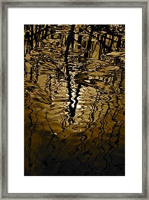 Abstract  II Framed Print by Dorota Nowak
