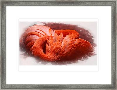 Abstract In Life Framed Print