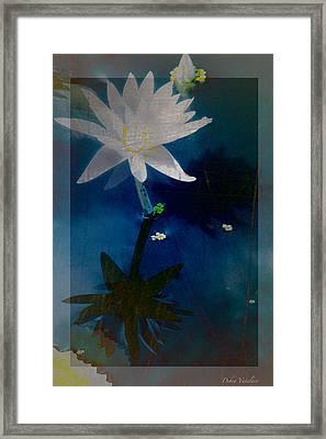 Abstract Lotus 1 Framed Print by Debra     Vatalaro