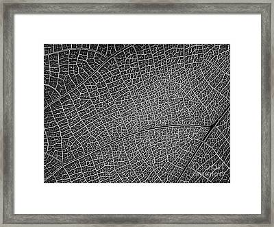 Abstract Pattern Framed Print by Yali Shi