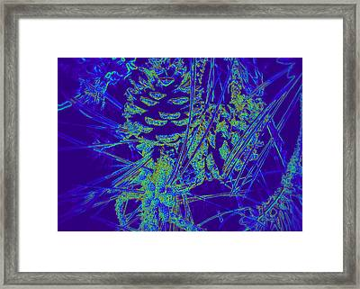 Abstract Pinecones Framed Print by Cindy Wright