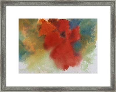 Abstract Red Poppy Framed Print