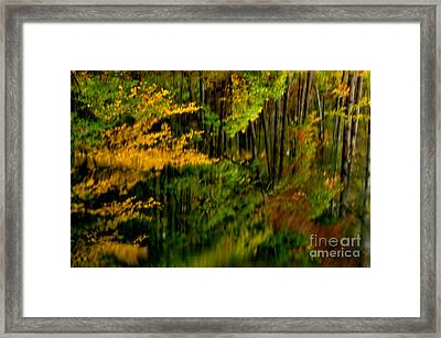 Abstract Reflections Framed Print by Thomas R Fletcher