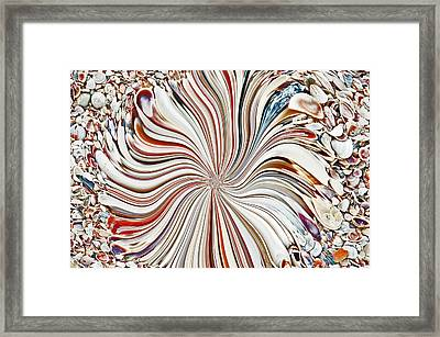 Abstract Seashells Framed Print by Aimee L Maher Photography and Art Visit ALMGallerydotcom