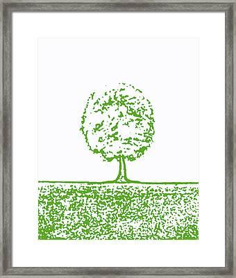 Abstract Tree By Shawna Erback Framed Print by Shawna Erback