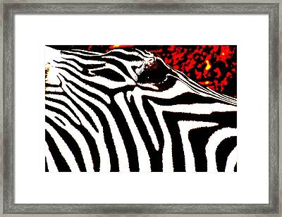 Abstract Zebra 001 Framed Print by Lon Casler Bixby