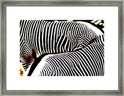 Abstract Zebra 002 Framed Print by Lon Casler Bixby