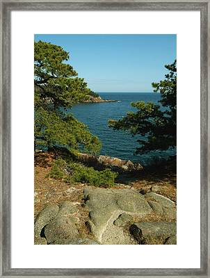 Acadia In Maine Framed Print by Rick Frost