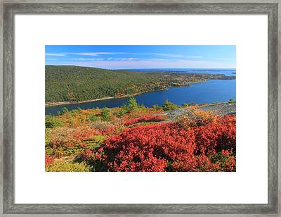 Acadia Mountain Foliage And Somes Sound Framed Print by John Burk