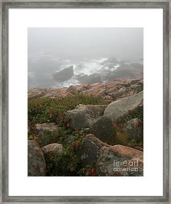 Acadia National Park Foggy Coast Framed Print by Chris Hill