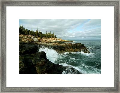 Acadia On The Shore Framed Print