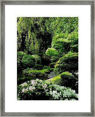 Accentuating The Green Framed Print