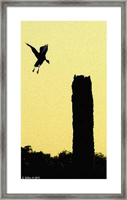 Accurate Landing Framed Print