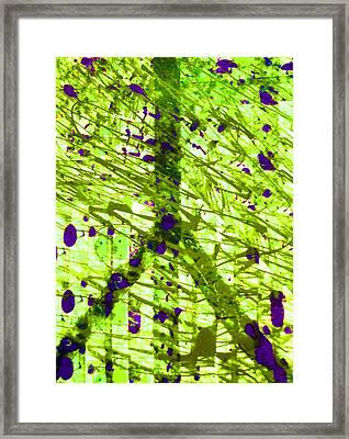 Acidic Peace Framed Print by Robert Haigh