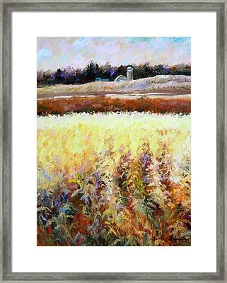 Across The Cornfield Framed Print